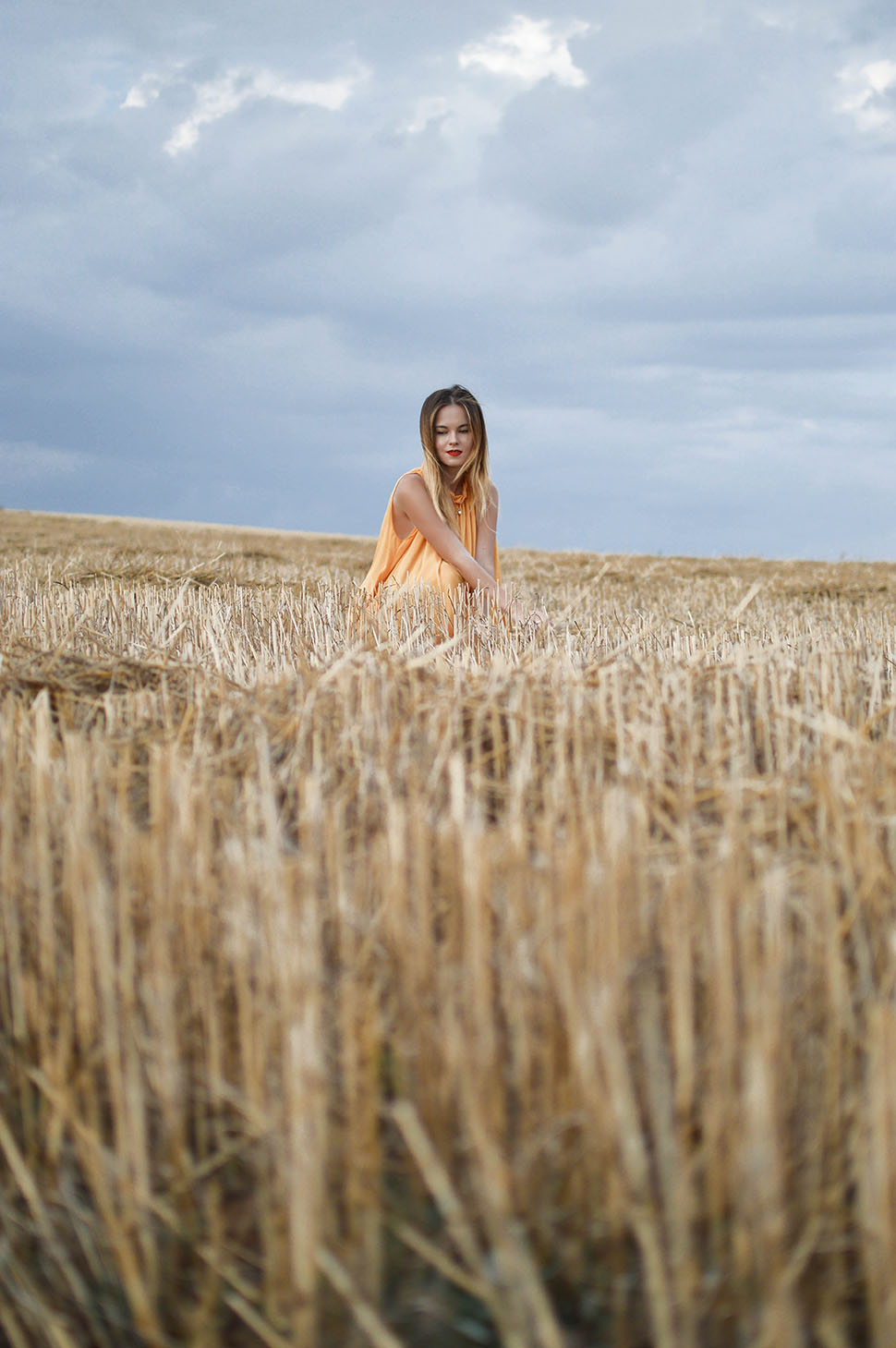 Wheaten August by Tamara Bellis